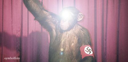 Nazi geblendet